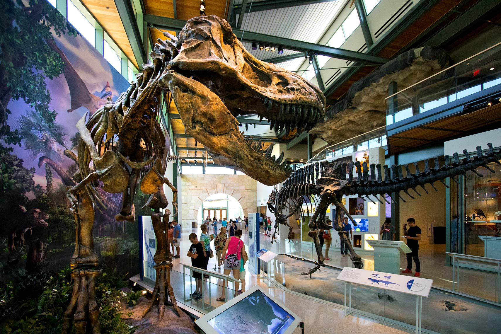 The Witte Museum in San Antonio By Houston Architectural Photographer