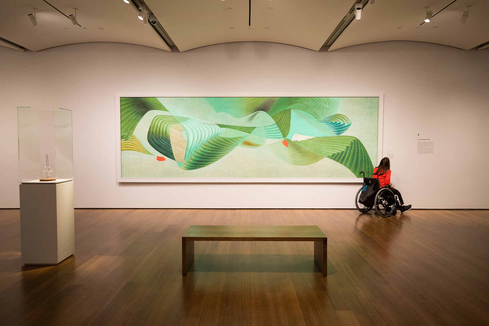 Museum visitor in a wheelchair views a green and red painting by Editorial Travel photographer