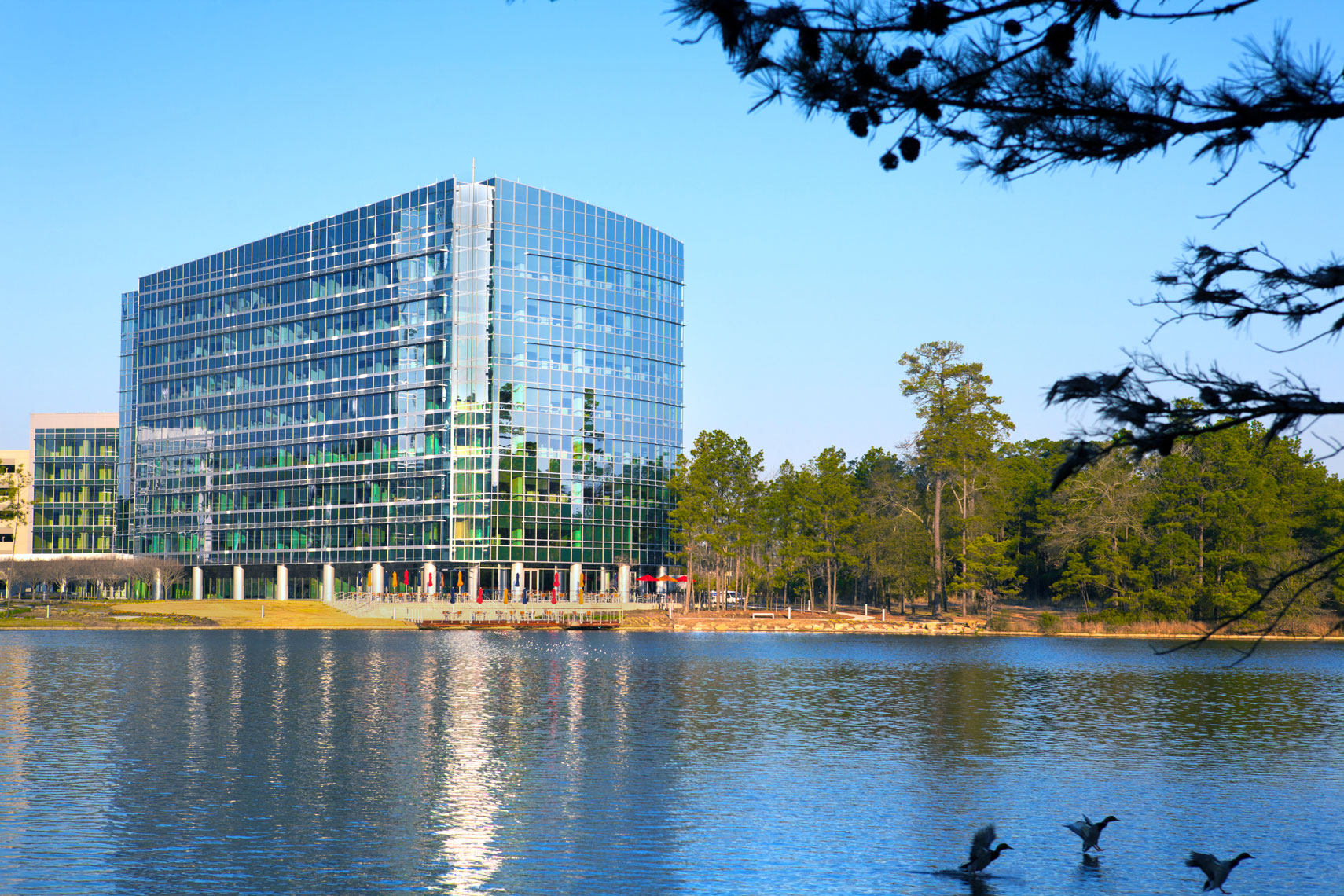 Architectural Photography of a midrise Office Building on a lake with ducks